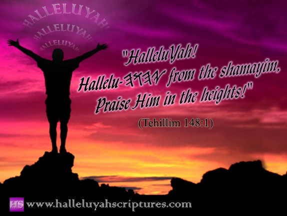 halleluyah-scriptures-waterproof-parallel-hebrew-bible-sacared-bible-restored-name-bible-the-best-bible-devine-name-bible-cepher-bible-audio-bible-95