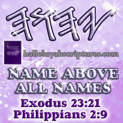 messianic-restored-names-biible-halleluyah-scriptures-the-scriptures-free-bible-hebrew-bible-hebrew-parallel-bible-waterproof-bible-israel-yisrael-yahweh-the-name